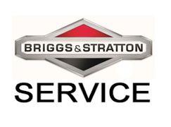 remont-dvigatelej-briggsstratton