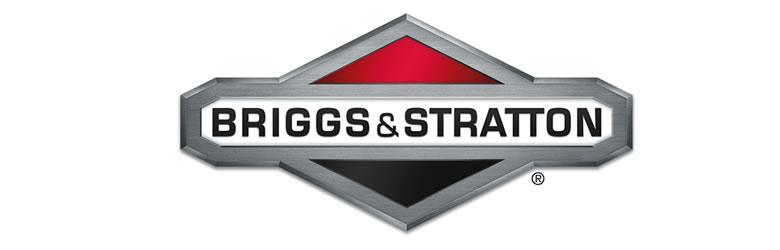 Ремонт-двигателя-Briggs&Stratton